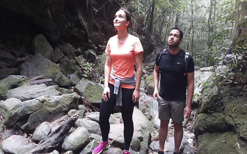 Hiking to Cachoeira das Almas (Tijuca Forest)