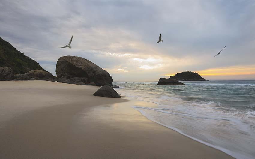 Visite des plus belles plages de Rio