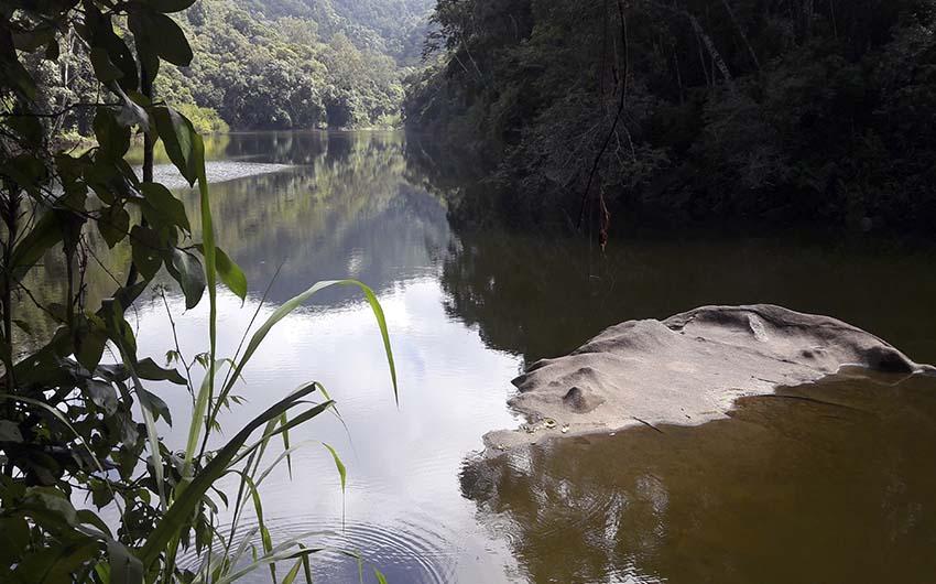 Randonnée Açude do Camorim (Parque da Pedra Branca)